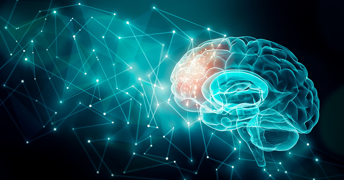Human brain activity with plexus lines.. External cerebral connections in the frontal lobe. Communication, psychology, artificial intelligence or AI, neuronal informations or cognition concepts illustration with copy space; blog: what is brain science